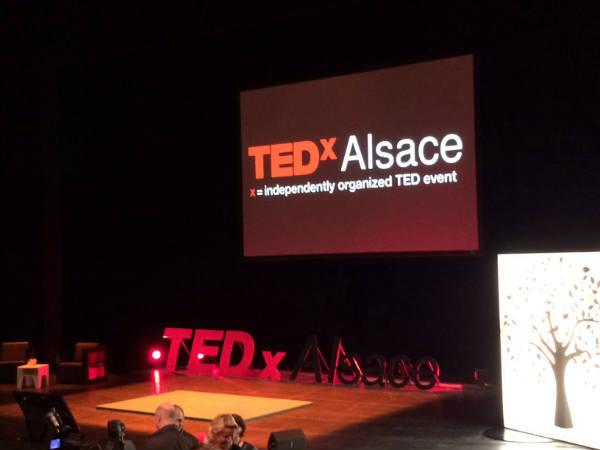Carton plein pour le TEDx Alsace 2013 : Retour à l'essentiel