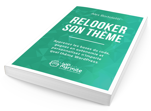 relooker-son-theme-guide